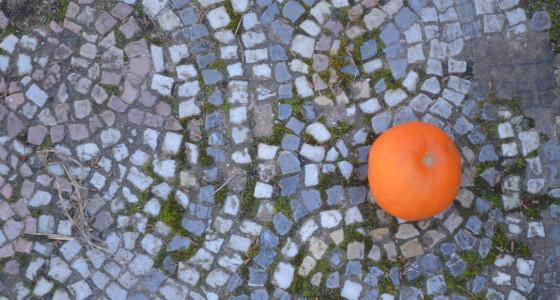 photo of orange on blue tiles